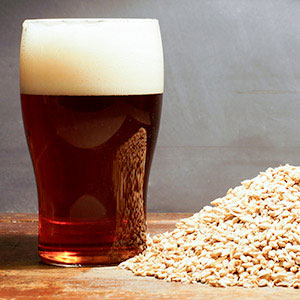 All Grain Beer Recipe Kits