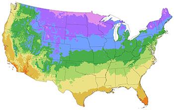 US Hardiness Zones map