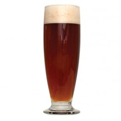 Munich Dunkel Recipes